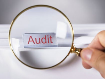 Fungsi Audit Pada Perusahaan